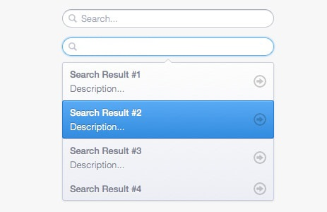 Search Box with Suggestions Dropdown