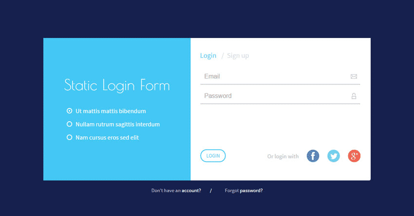 Static Login Form