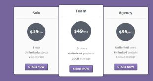 Pricing-Table-HTML-Template