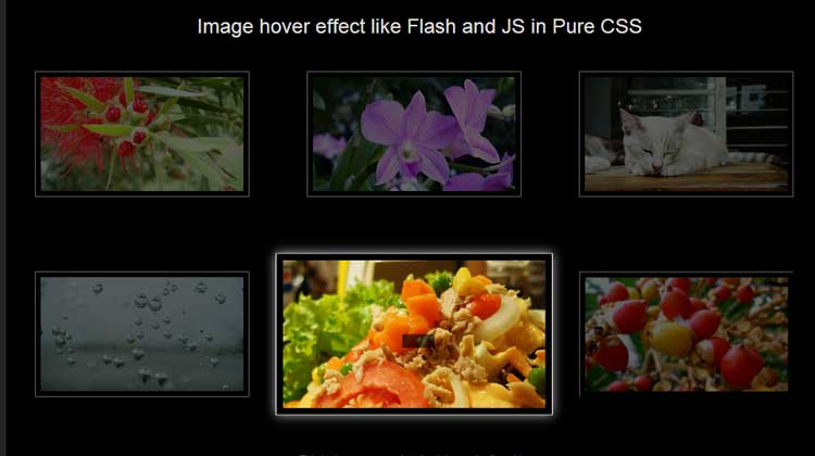 Sexy-Image-Hover-Effects-using-CSS3