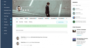 best bbpress wordpress themes