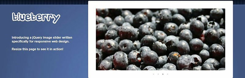 Blueberry Image Slider