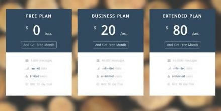 Free Pricing Table Startup UI Template